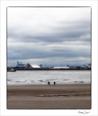 the waterfront (Maddie Digital) Tags: birds river mersey wirral newbrighton