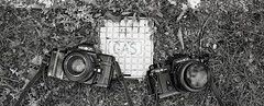 G.A.S (Gear Acquisition Syndrome) (TheGentlemanPhotographer) Tags: bw film 50mm 2000 minolta gas mount f2 ml fp4 yashica 7000 fx3 yashicacontax