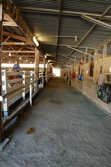 "Indoor Arena Barn • <a style=""font-size:0.8em;"" href=""https://www.flickr.com/photos/92793179@N08/9304758148/"" target=""_blank"">View on Flickr</a>"