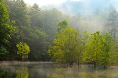 Eagle Creek at Fontana, Great Smoky Mountains National Park (esywlkr) Tags: mist nc northcarolina hike backpacking fontana eaglecreek wnc greatsmokymountainsnationalpark gsmnp westernnorthcarolina fontanalake