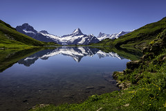 Bachalpsee (PhiiiiiiiL) Tags: sky panorama mountain lake flower reflection green berg schweiz switzerland see nikon day blumen berge clear grindelwald grün bergsee eiger spiegelung jungfrau mönch bachalpsee bachsee visipix d800e