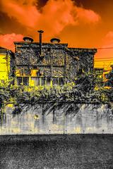 Tequila Sunrise (Brendan Arthur Ring) Tags: japan canon photography eos tokyo flickr august 7d  11th 12th hdr   shinjukuku 2013 kamiochiai  brendanarthurring photographersontumblr 08122013 img810645tonemappedsepiapanpscamraw