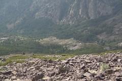 Refuge d'Ortu di u Piobbu (EssieP) Tags: france hiking gr20 corsica montecorona refugedelortudiupiobbu