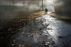 Paseos de otoo (Inmacor) Tags: park parque autumn people luz leaves contraluz hojas pareja explore paseo promenade otoo francia bruma inmacor blinkagain