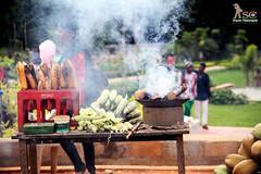 Smokey Treat (Srujan Chennupati) Tags: park street wood girl garden bench zoo corn picnic smoke salt tourist safari stove charcoal cocacola chilli visitor coconuts trey candyfloss bannergattabiologicalpark