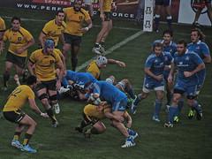 Italia-Australia (enri.co) Tags: match italia rugby italiaaustralia italrugby nazionale