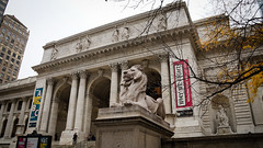 New York Public Library, Fifth Avenue at 42nd Street (Jeffrey) Tags: city nyc newyorkcity november urban snow ny newyork fall statue manhattan library lion nypl newyorkpubliclibrary 5thavenue statues landmark midtown lions snowing fifthavenue patience 40s 42ndstreet fortitude 2013