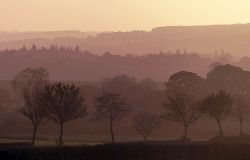 Last of the light (geoffspages) Tags: autumn landscape shropshire atmosphere distance
