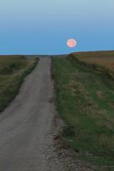 T Moon (jacehgn) Tags: moon moonrise moonset countryroad nortdakota