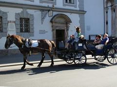 Innsbruck paardenkoets (Arthur-A) Tags: horse austria oostenrijk carriage innsbruck koets paardenkoets