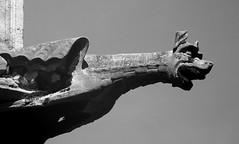 paris 4 (ondey) Tags: paris france church de europe cathedral gothic medieval notredame gargoyle cathdrale notre dame francie kostel evropa katedrla pa chrm gotika stedovk chrli