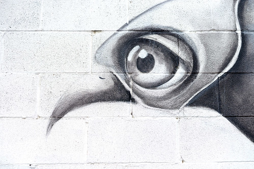 Ana Maria Graffiti Ana Maria Eye Detail | Houston