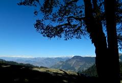 Way to raghupur fort ruins (Sougata2013) Tags: blue sky india mountain nature landscape fort hill hilltop kullu himachalpradesh himalayanrange jaloripass raghupurfort raghupurfortruins waytoraghupurfortruins