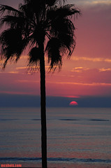 AnotherYearAnotherSunset (mcshots) Tags: ocean california travel winter sunset sea sky usa sun nature water clouds palms evening coast stock socal palmtree mcshots swells losangelescounty