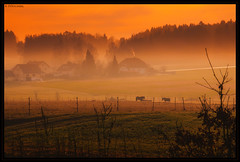 """Upper Palatinate within morning light • <a style=""""font-size:0.8em;"""" href=""""http://www.flickr.com/photos/58574596@N06/11858427326/"""" target=""""_blank"""">View on Flickr</a>"""