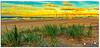 Afternoon Light (Brett Huch Photography) Tags: ocean sunset sea sky seascape beach nature surf seascapes australia nsw aussie fingalheads sandpumpingjetty