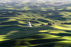 Grain Elevator - EXPLORED (kwphotos.com) Tags: palouse eastern washington state steptoe butte rolling hills wheat fields farm farmland farming grain elevator silos white green spring evening light shadows june kyle wasilewski kwphotos kwphotoscom