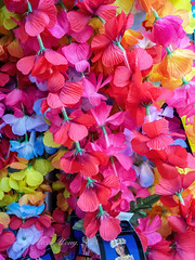 Colorful artificial leis outside a shop (Victor Wong (sfe-co2)) Tags: colorful artificial lei red blue yellow bright flower plant texture outdoor
