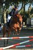 IMG_4897 (Bas & Emily) Tags: horse horses horsejumping jump jumping rijden paard paarden springen springwedstrijd sport belleepoque hindernis