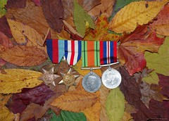 world war II war medals autumn (1) (Simon Dell Photography) Tags: autumn leafs leaves fall season winter color design wall art poster image simon dell photography white background awsome old new sheffield collection stunning xxx hackenthorpe photo war medals red yellow green brown