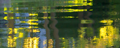 Abstract Reflection (Pauline Brock) Tags: water river green reflection light abstract colors nature