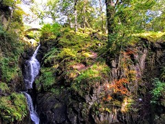 Aria Force (cattan2011) Tags: england landscapephotography landscape natureperfect naturephotography nature mountains mountainscape waterscape trees travelblogger traveltuesday travel autumn waterfalls lakedistrict ariaforce