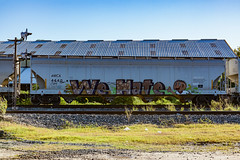 (o texano) Tags: houston texas graffiti trains freights bench benching wh wehate