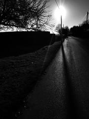 Apricity ... (Liane_M_S) Tags: countryroads farmland wintersun lincolnshire moulton monochrome blackandwhite iphoneography