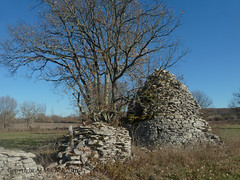 Caselle, gariotte, wall. (AJ Mitchell) Tags: gariotte drystone hut quercy caselle caselas cazelle stonewall field rural aveyron crumbling falling decay abandoned post
