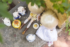 Happy Weekend (Brie G.) Tags: dals dolls obitsu junplanning groove rement rilakkuma calicocritters sylvanianfamilies cats
