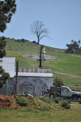8-foot IBC Geared Simplex; Murrumbateman, NSW, Australia (sarracenia.flava) Tags: ibc intercolonialboringcompany geared simplex windmill murrumbateman nsw newsouthwales australia