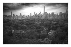 Rush hour Central Park Metropolis (dannydalypix) Tags: centralpark newyorkcity nyc gothamist gotham metropolis metropolitan