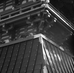 161016_ZenzaBronicaS2_005 (Matsui Hiroyuki) Tags: zenzabronicas2 zenzanon150mmf35 fujifilmneopan100acros epsongtx8203200dpi