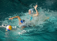 2C041303 (roel.ubels) Tags: len euro league waterpolo sport topsport utrecht uzsc 2016 krommerijn women