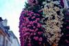 156e Vente des Vins de Beaune (kolapix1) Tags: beaune ventedesvins bourgogne france soir extérieur festivités terroir