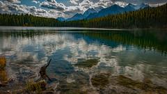 Herbert Lake (johnfuj) Tags: alberta banffnationalpark herbert lake water scenery mountain lakelouise canada can