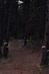 Curse (serenastuart) Tags: theyfollow cursed witches forest path dark haunting