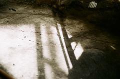 untitled (yako ma) Tags: leica leicam3 m3 nokton voi voigtlander filmphotography film filmcamera fujicolor c200