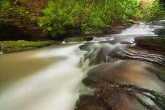 Water on the Rocks (Proleshi) Tags: trees naturaleza green nature water leaves landscape waterfall scenery natural scenic naturallight tokina greenery wispy josephs jamal longexposures 1116 111628 d300s proleshi