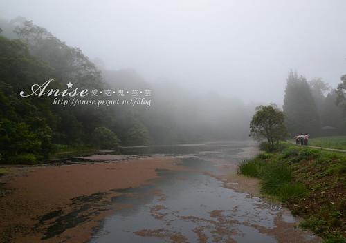 福山植物園_010.jpg