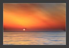 _81C6624-Editar.jpg (Mafr-Mcfa) Tags: barcelona espaa paisajes naturaleza mar europa mediterraneo amanecer barceloneta nubes cielos catalua playas medioambiente continente amaneceres espigndelgas comunidadesautnomasprovincias localizacionesdelmundo
