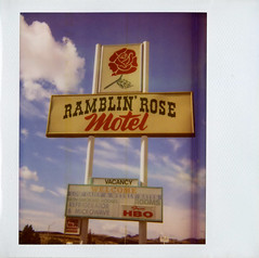 Ramblin' Rose Motel (Nick Leonard) Tags: old blue red arizona sky classic film sign rose clouds analog vintage polaroid route66 nick motel roadtrip scan retro signage polaroidspectra expired fonts timeless kingman expiredfilm plexiglass instantfilm imagefilm historicroute66 polaroidspectrafilm spectrafilm polaroidspectrasystem integralfilm nickleonard type1200 expired2009 edgecut ramblinrosemotel believeinfilm