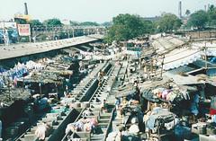 Dhobi Ghat, Mumbai (fastcat!) Tags: india 1996 laundry scanned mumbai dhobighat