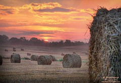 Sunrise, Hagerstown Maryland (PhotosToArtByMike) Tags: md farm straw maryland farmland hay haybale westernmaryland washingtoncounty hagerstownmaryland