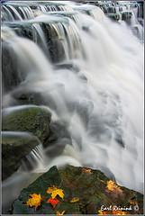 "Waterfalls in Ontario (131017-0043) (Earl Reinink) Tags: autumn ontario canada nature water river nikon flickr waterfalls earl water"" ""nikon photography"" ""nature ""earl ""running reinink reinink"" d4"""