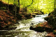roddlesworth (AppleCrypt) Tags: autumn light england nature water creek stream walks hiking trails lancashire pennines westpenninemoors roddlesworth applecrypt