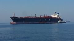 Oriental Queen (ST33VO) Tags: sea water marine ship commerce floating vessel queen maritime lpg oriental float tanker afloat 9282106