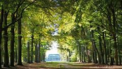 The frontside of castle Broekhuizen - Voorkant kasteel Broekhuizen (Cajaflez) Tags: autumn trees green castle bomen groen herbst herfst kasteel leersum autun provincieutrecht broekhuizen coth5 mygearandme infinitexposure