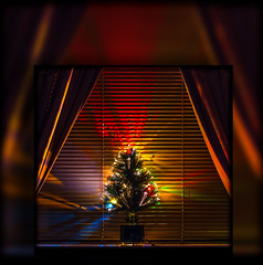Christmas Tree. layers. (CWhatPhotos) Tags: pictures christmas new xmas holiday colour tree green window colors pine canon season that photography eos prime lights glow colours foto vie