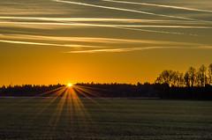 Sunset (hjuengst) Tags: wood sunset sky orange clouds forest landscape bayern bavaria golden sonnenuntergang himmel wolken landschaft wald sonnenstrahlen goldeneslicht pwpartlycloudy vision:sunset=0865 vision:text=0533 vision:car=0575 vision:sky=0966 vision:clouds=0896 vision:outdoor=0551